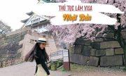 Thủ tục làm visa Nhật Bản như thế nào?