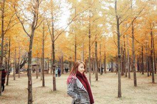 6 địa điểm du lịch mùa thu Hàn Quốc đẹp đến trôi tim post image