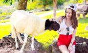 7 điểm du lịch Thái Lan Pattaya nóng bỏng tay mà bạn không thể bỏ qua