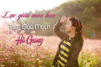 Lạc vào miền cổ tích khi đi du lịch Hà Giang mùa hoa tam giác mạch post image
