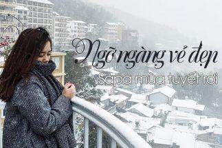 Du lịch Sapa mùa dông – Thiên đường tuyết mang đậm dấu ấn Việt Nam post image
