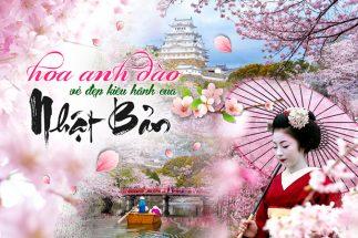 Du lịch Nhật Bản mùa hoa anh đào chiêm ngưỡng hồn hoa xứ Phù Tang post image