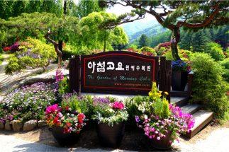 Bật mí khu vườn sẽ tổ chức lễ hội mùa xuân nổi tiếng ở Hàn Quốc post image