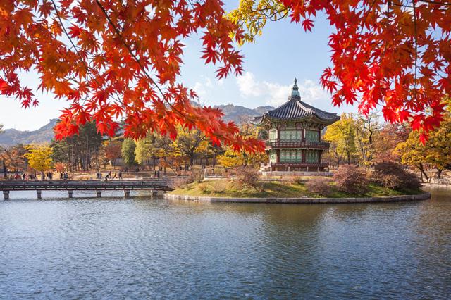 Du lịch Hàn Quốc mùa thu post image