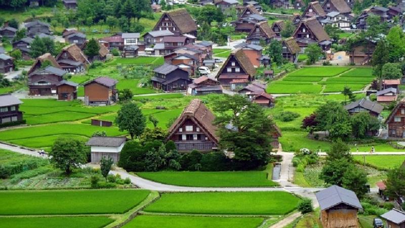 Làng lịch sử Shirakkawa và Gokayama