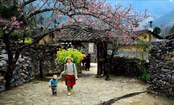 Kinh nghiệm du lịch Sapa mùa Hoa Đào cho ai đi lần đầu post image