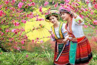 nét đẹp mùa hoa đào sapa