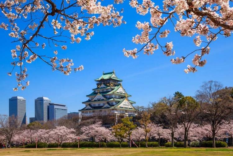 Những điểm du lịch Nhật Bản tết đẹp mê say