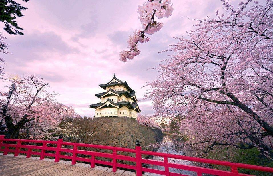 Những tour du lịch châu Á tết Canh Tý hấp dẫn nhất