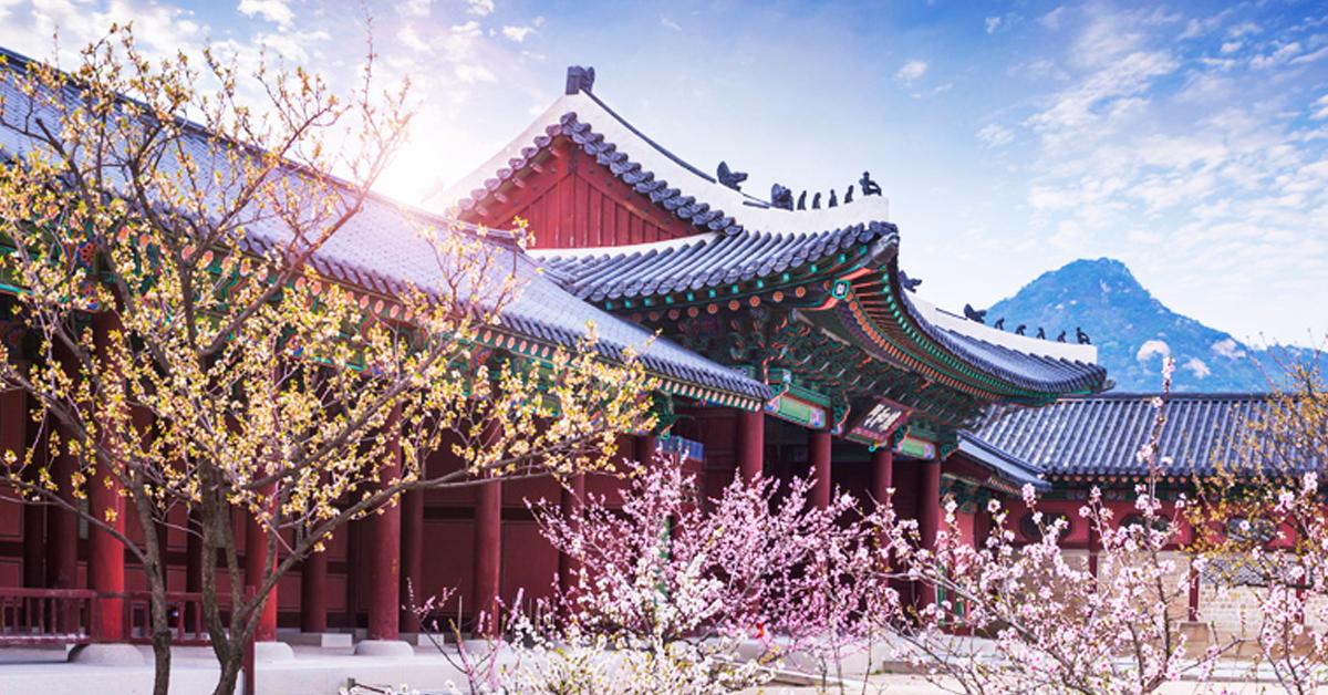 Tour du lịch Hàn Quốc tết âm lịch hấp dẫn nhất năm 2020