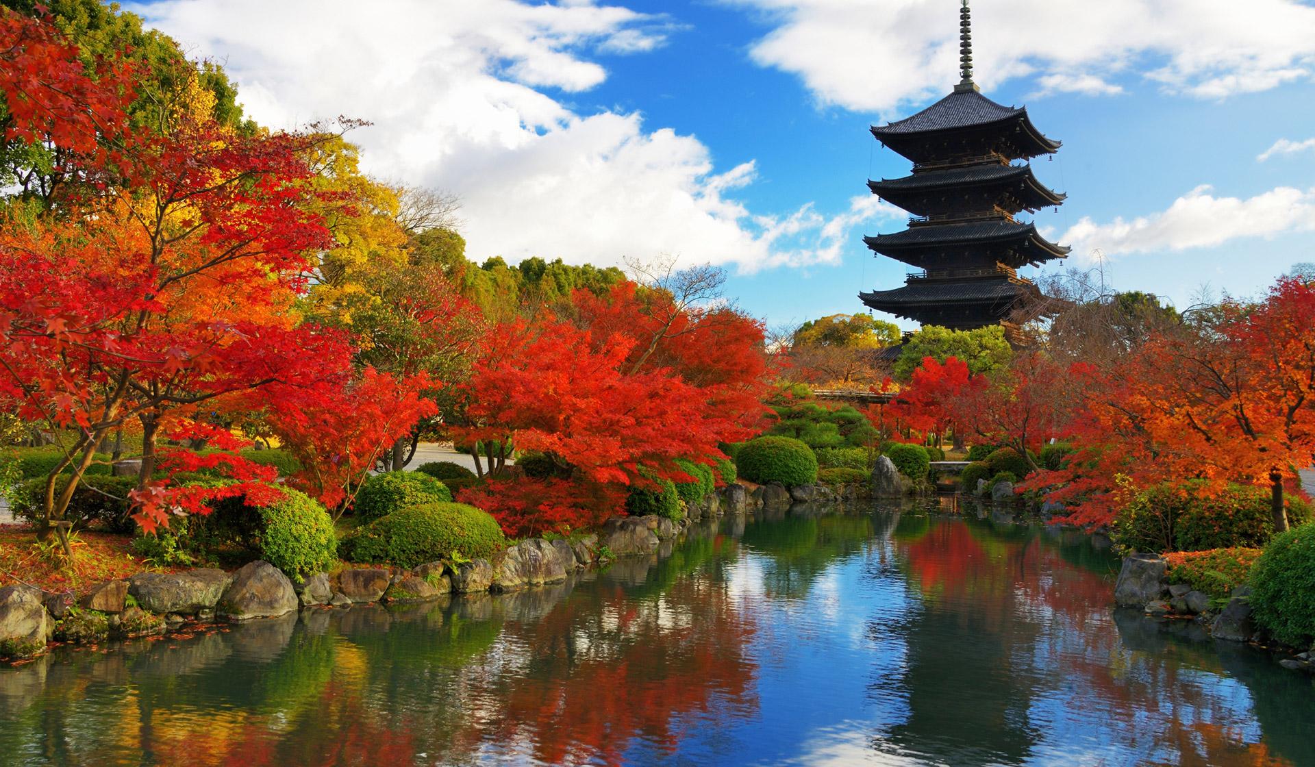 Tour du lịch Nhật Bản tết âm lịch 2020 cực kỳ hấp dẫn